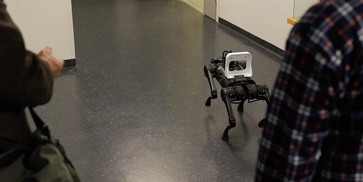 Robottikoira kävelyllä