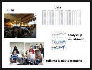 Data-analyytikon tehtäväkenttää: Ilmiötä voi ymmärtää datan avulla tai päinvastoin. Ymmärrys syntyy analyysin kautta ja visuaaliset työkalut auttavat monitieteisessä viestinnässä, kun analyysista tehdään tulkintaa ja uusia päätöksiä. Kuvitus on Bioeconomy 4.0 -projektin maitoketjututkimuksestamme (Koskelka ym. 2020)