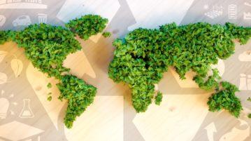 Lehtisilpusta muodostettu maailmankartta kierrätysaiheisella kuvapohjalla