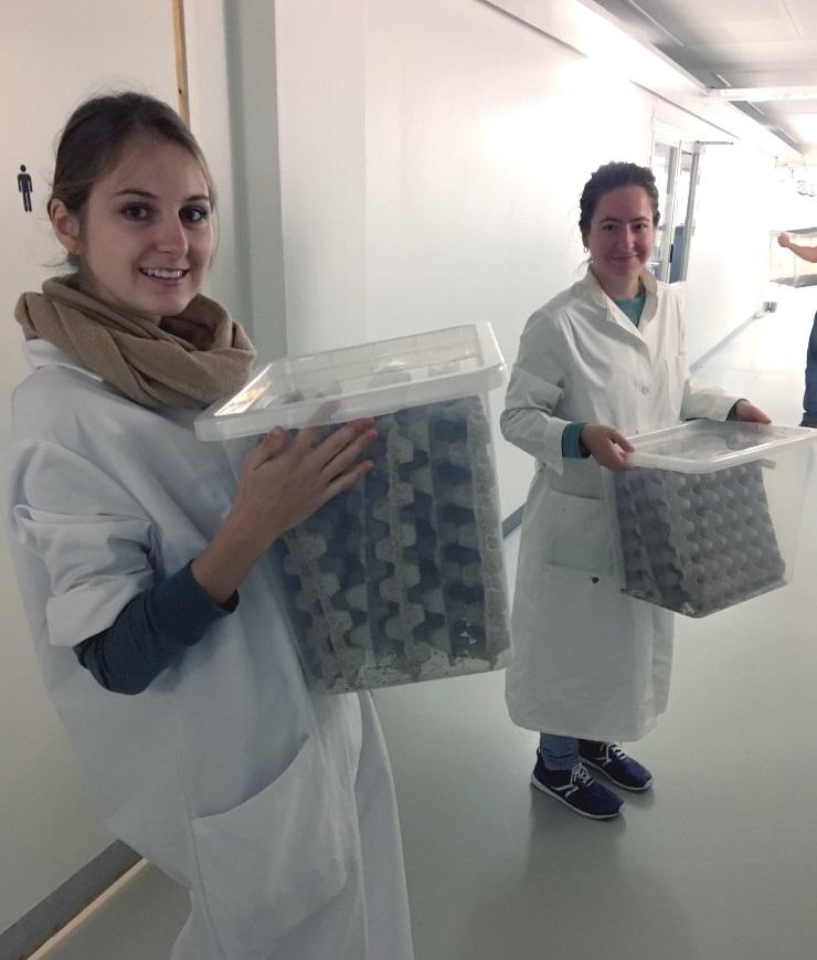 Kaksi valkotakkista nuorta naista kantamassa muovilaatikoita