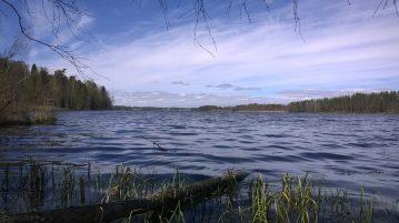 Kuva Pakkalanjärvestä