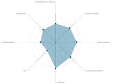 Digikyvykkyyden tulos DigCompOrg-viitekehyksellä arvioituna
