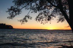 Saaren Kansanpuisto Tammela